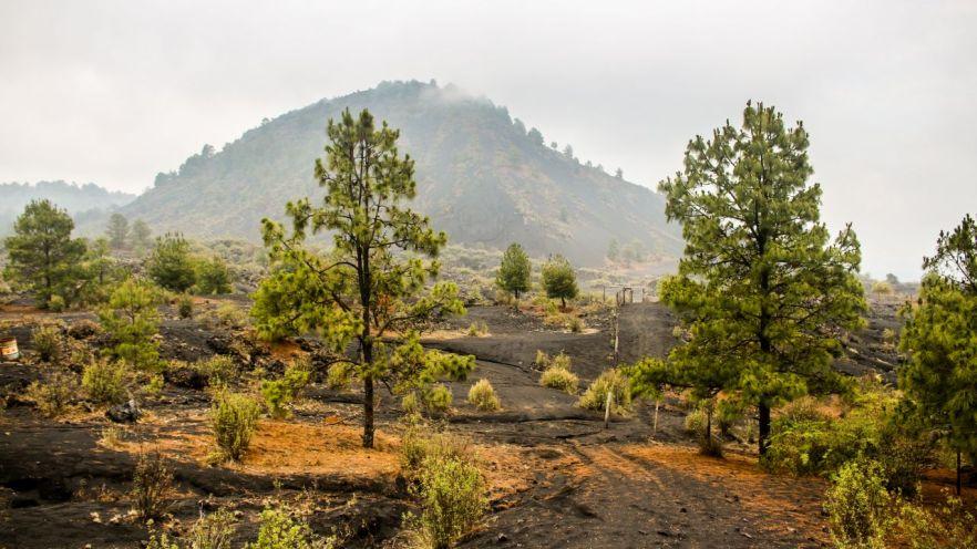Der Vulkan Paricutin