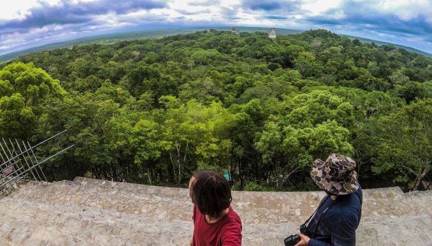 Aussicht vom Templo IV, Tikal