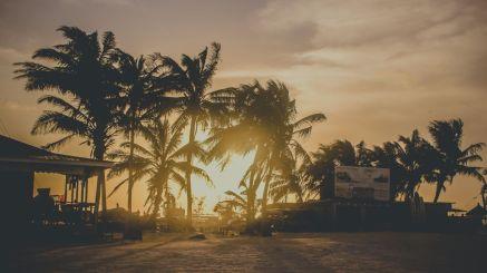 Sonnenuntergang mit Palmen auf Caye Caulker