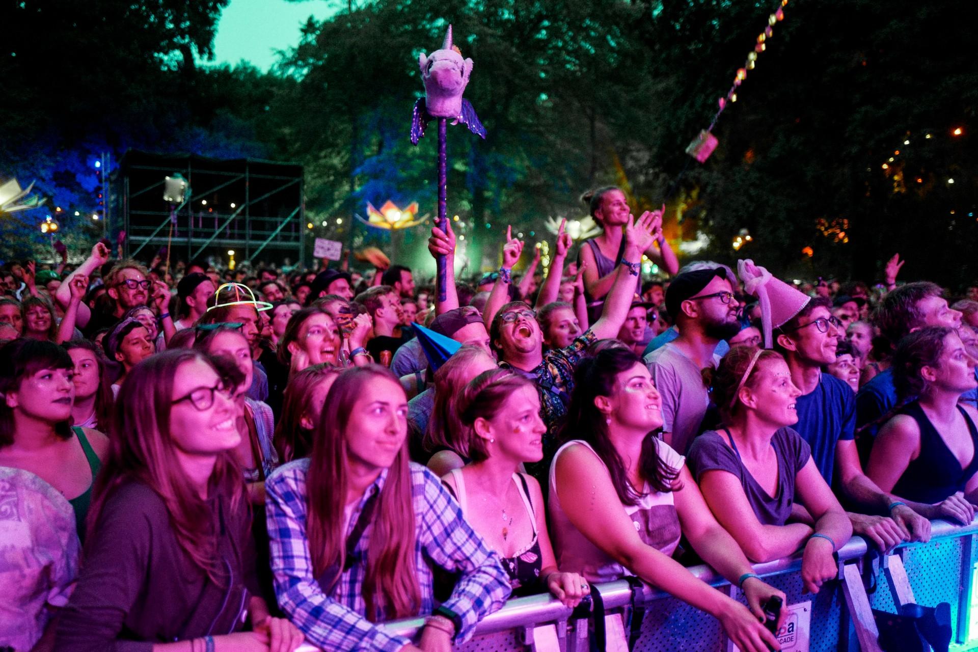 Crowd auf dem Appletree Garden Festival