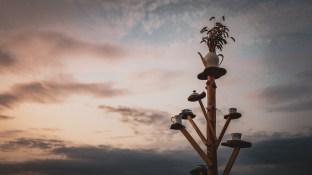 Skandaløs Festival 2019