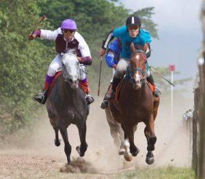 Valano bekroond tot paard van het jaar 1 (1)