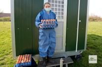 etwa 450 Eier kommen pro Tag auf dem Hof von Janina Lohmann in Hiltrup zusammen.