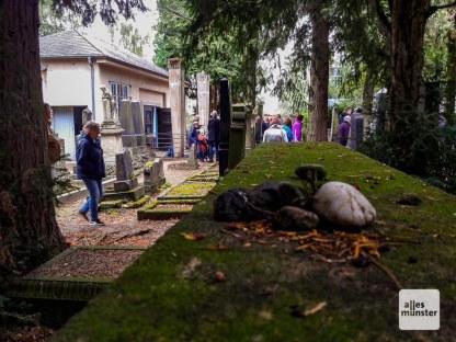 Der jüdische Friedhof an der Einsteinstraße. (Foto: Ralf Clausen)