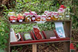 """Marmelade to go im """"Pflanzenheim Havixbeck e.V."""" , bitte nicht das Bezahlen vergessen :-) (Foto: Michael Bührke)"""