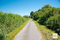 Bei den Rieselfeldern ist man zum Teil auf einsamen Wegen unterwegs. (Foto: Michael Bührke)
