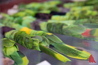 Dieser Federschmuck stammt von Federn bedrohter Vogelarten. (Foto: Michael Bührke)