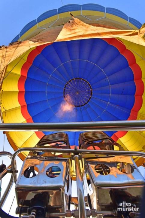 montgolfiade_2021-tvk-31