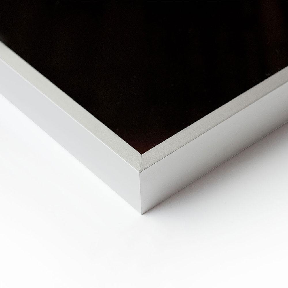 Nielsen Alurahmen Profil Alpha 40X50 Cm - Silber Matt | Allesrahmen.De