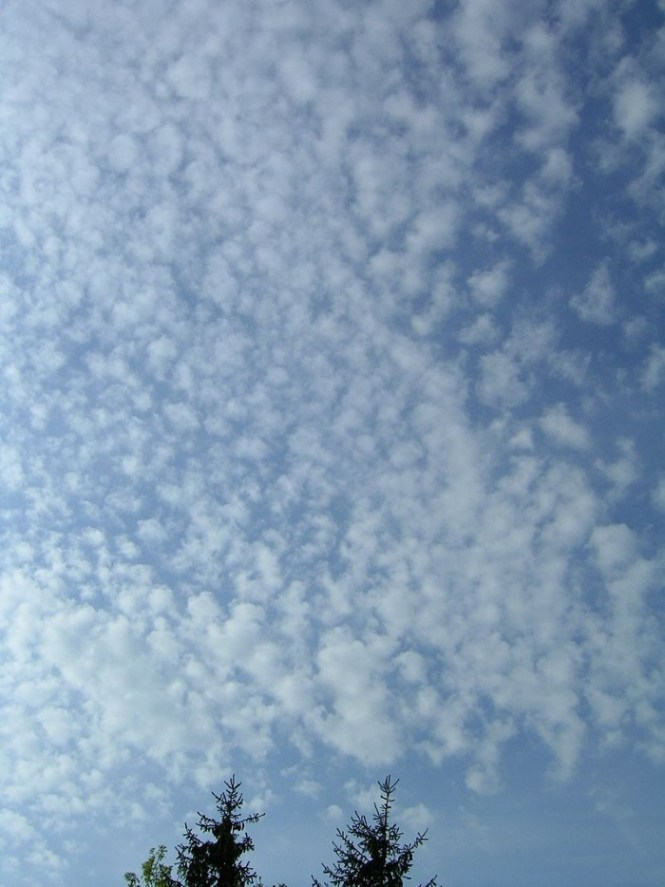 Cirrocumulus - TOP 10 MOST COMMON CLOUDS EXPLAINED