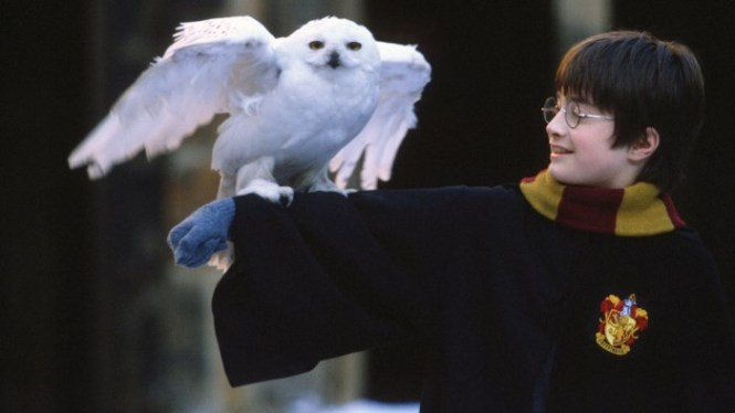 Harry Potter and the Philosophers Stone - TOP 10 BEST FANTASY MOVIES OF ALL TIMES