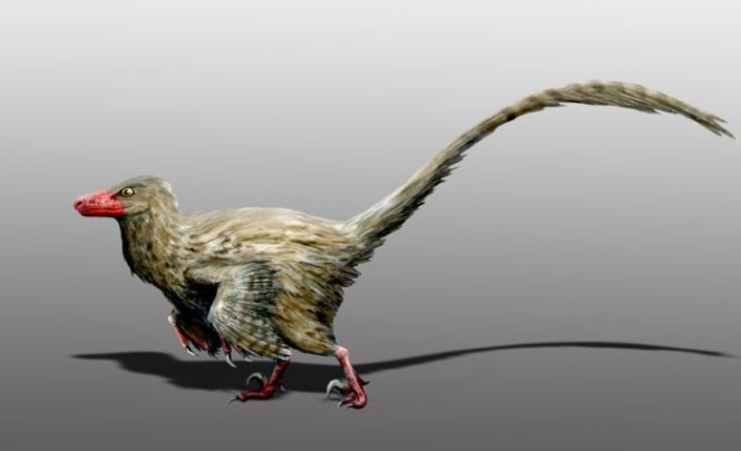top ten weirdest dinosaurs