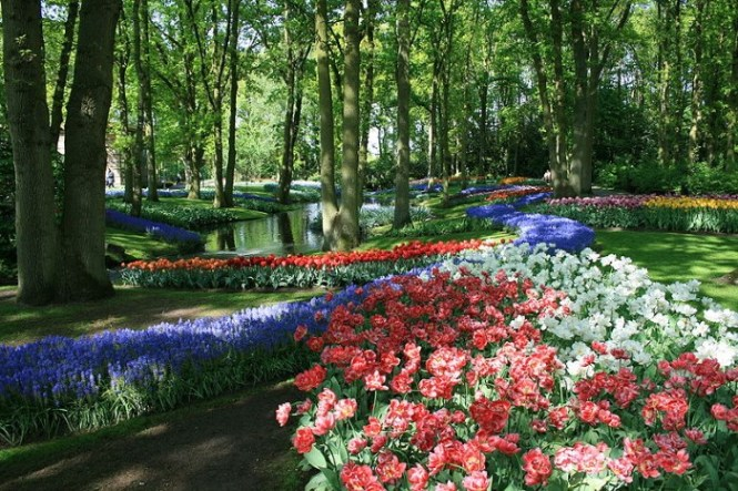 Keukenhof - TOP 10 TOURIST ATTRACTIONS AND THINGS TO DO IN THE NETHERLANDS