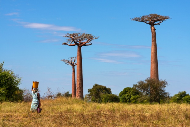 Madagaskar - TOP 10 POOREST COUNTRIES IN THE WORLD