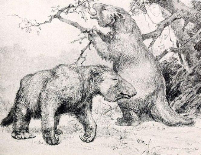 reuze grondluiaard - TOP 10 EXCTINCT ANIMALS IN HISTORY | PERISHED ANIMALS SPECIES