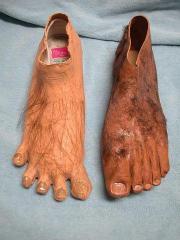 compair feet