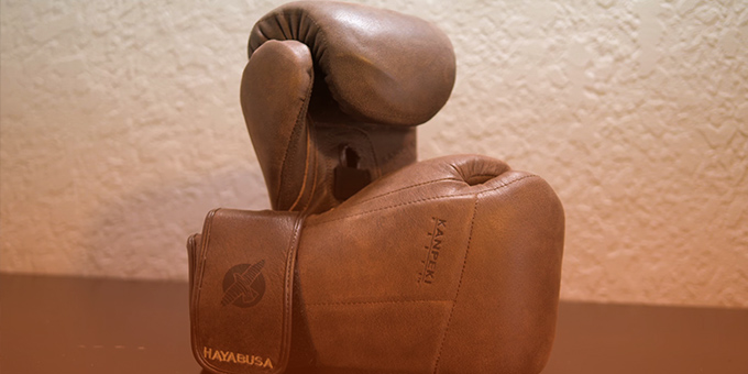 Hayabusa Tokushu Regenesis Boxing Gloves Review