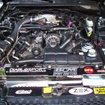 Post Your Clean 96 98 Engine Bay Pics Ford Mustang Forum