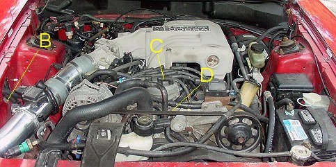 302 Ford Engine Spark Plug Wiring Diagram Adjusting The Timing Bumping It Up Ford Mustang Forum
