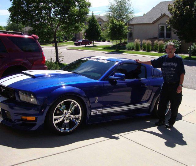 Click Image For Larger Version Name Mustang  Jpg Views  Size