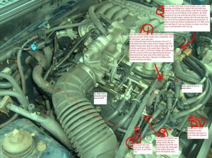 1998 Mustang Heater Hose Ruptured  Ford Mustang Forum