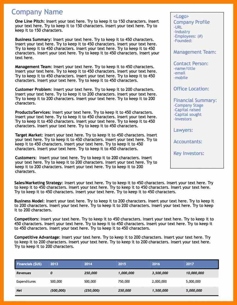1 page executive summary template