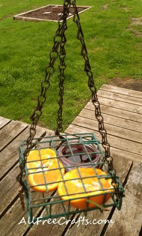 suet feeder used as oriole feeding platform