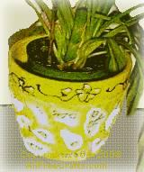mosaic clay pot