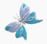 blue bottle butterfly