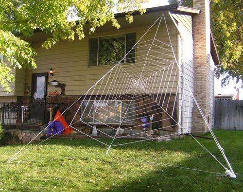 clothesline spider web