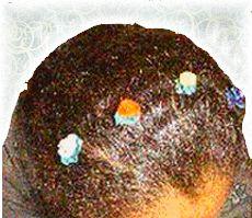 hair snap roses