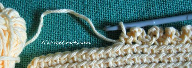 crocheted picot border detail.