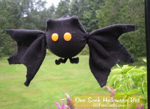 one sock bat hanging in garden