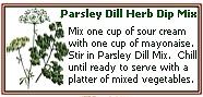 dill-herb (25K)