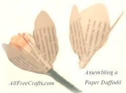 daffodilassembly (15K)