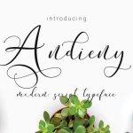 Andieny Script Font