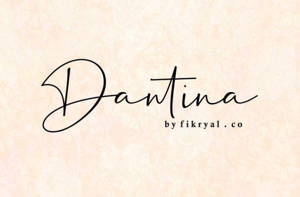 Dantina Handwritten Font