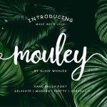 Mouley Script Font