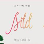 Sild Handwritten Font
