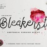Bleakerst Script Font