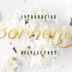 Bornena Font