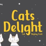 Cats Delight Display Font