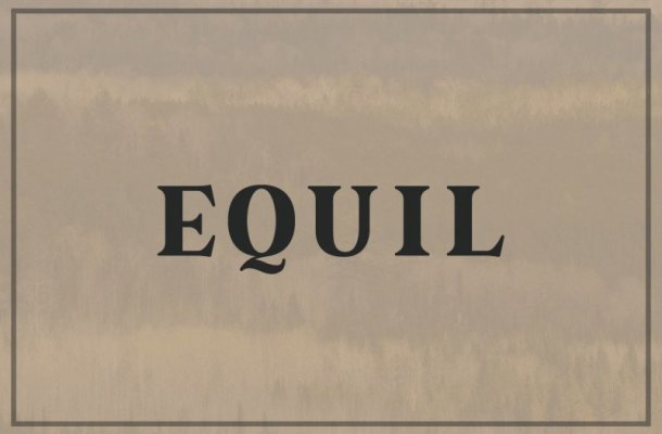 Equil Serif Font
