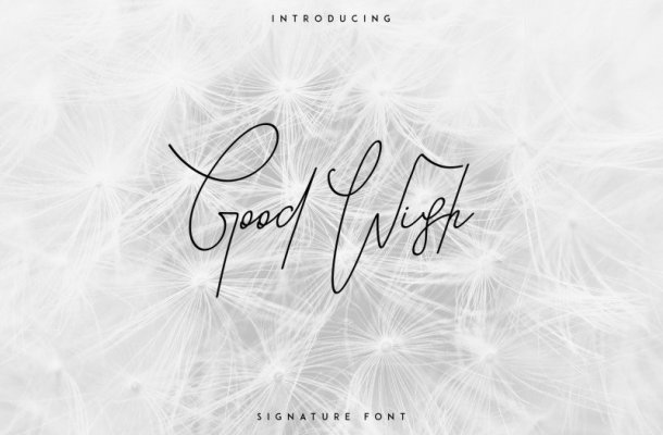 Good Wish Signature Font