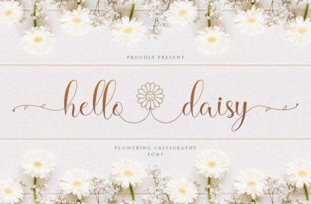 Hello Daisy Calligraphy Script Font