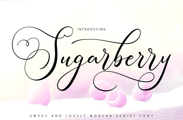Sugarberry Calligraphy Script Font