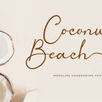 Coconut Beach Monoline Handwritten Font