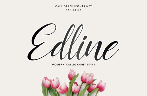 Edline Modern Calligraphy Script Font