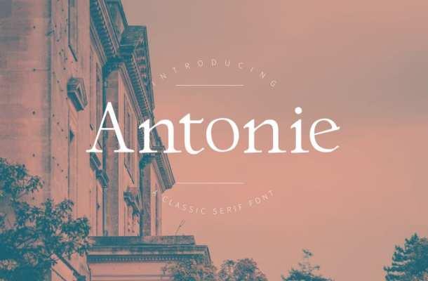 Antonie Serif Font Free