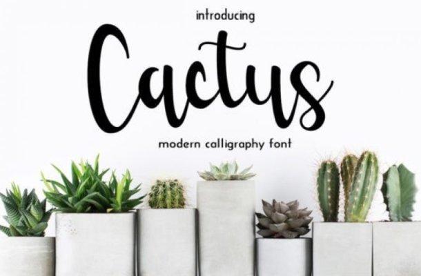 Cactus Calligraphy Font Free